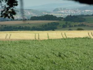 Blick aus dem Planwagen auf Maisfelder und Doerfer im Hintergrund